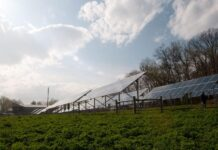 Solar Emerging as Threat to Farm Preservation | Farm Energy Usage & Solutions