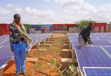 UNHCR- Solar cooperatives give refugees and locals in Ethiopia clean energy and livelihoods